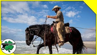 Cowboy Spurs & Saddles - J.M. Davis Arms And Historical Museum (Tour)