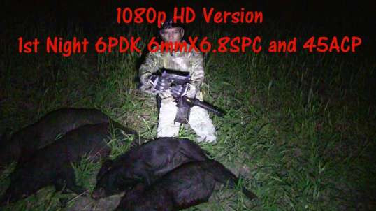 Lehigh Defense1st Night Texas Hogs 2017 45ACP 120gr XD 6PDK  92gr CC