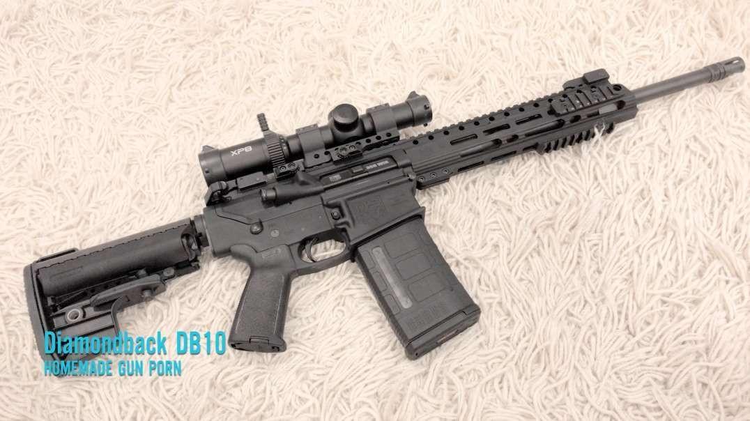 Filthy Gun Porn!  Diamondback DB10 (AR10)