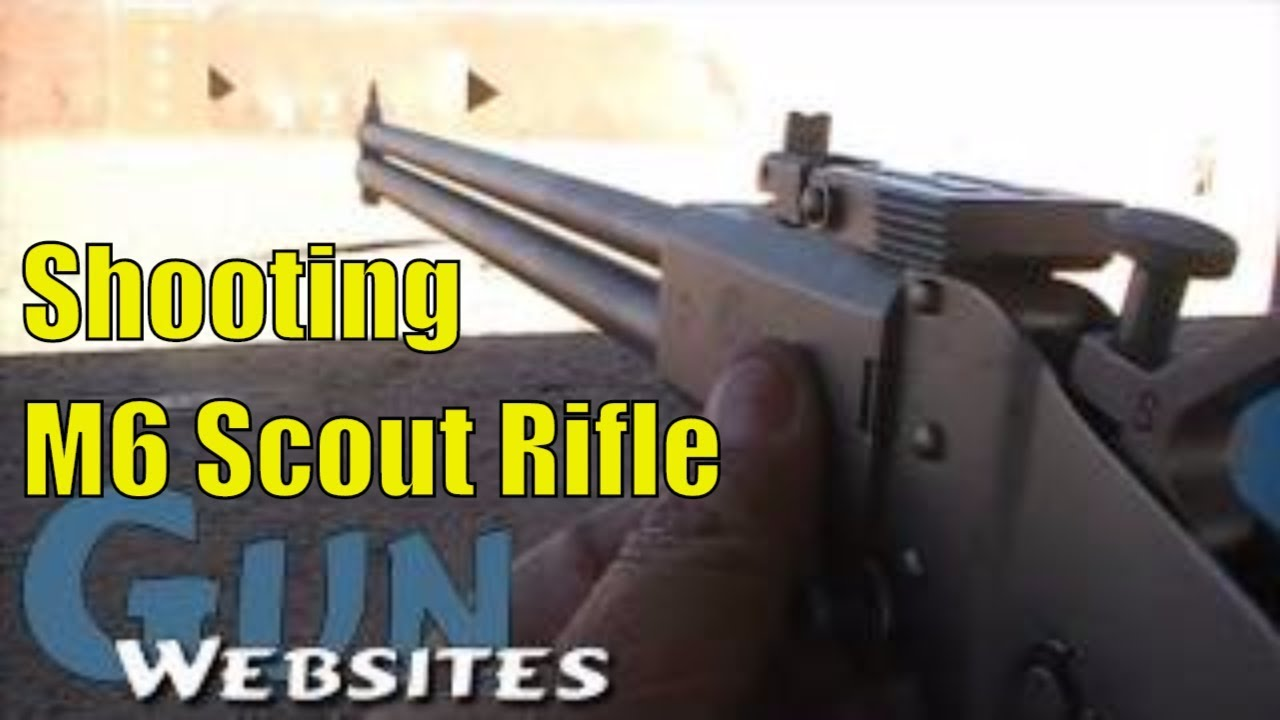 Shooting M6 Scout Rifle: Springfield Armory Survival Rifle Extra 22lr Ammo in the stock