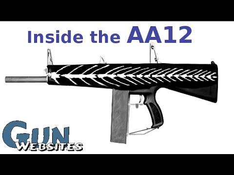 AA12 Full Auto Shotgun (Inside the Gun)