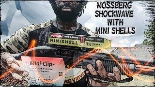 MOSSBERG SHOCKWAVE WITH AGUILA MINISHELLS