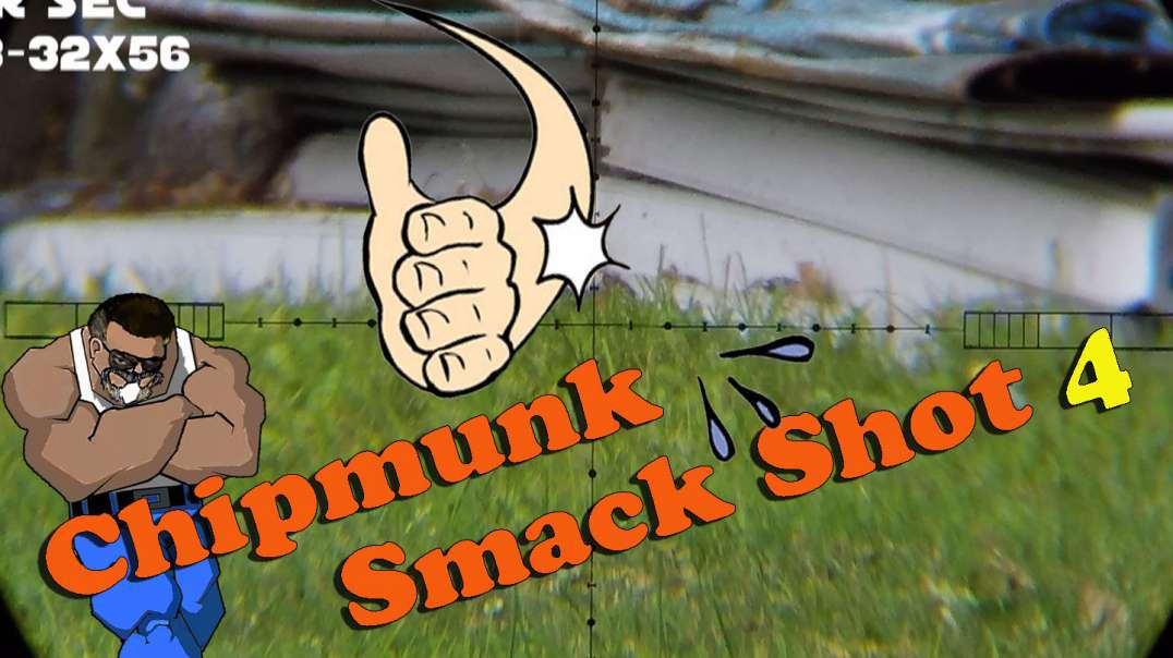 Chipmunk Smack Shot #4