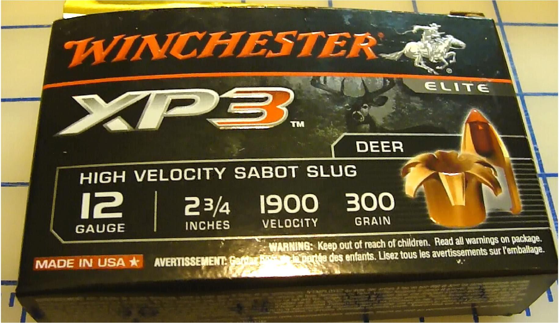 Winchester XP3 12GA Slug 300 Grain Gel Test