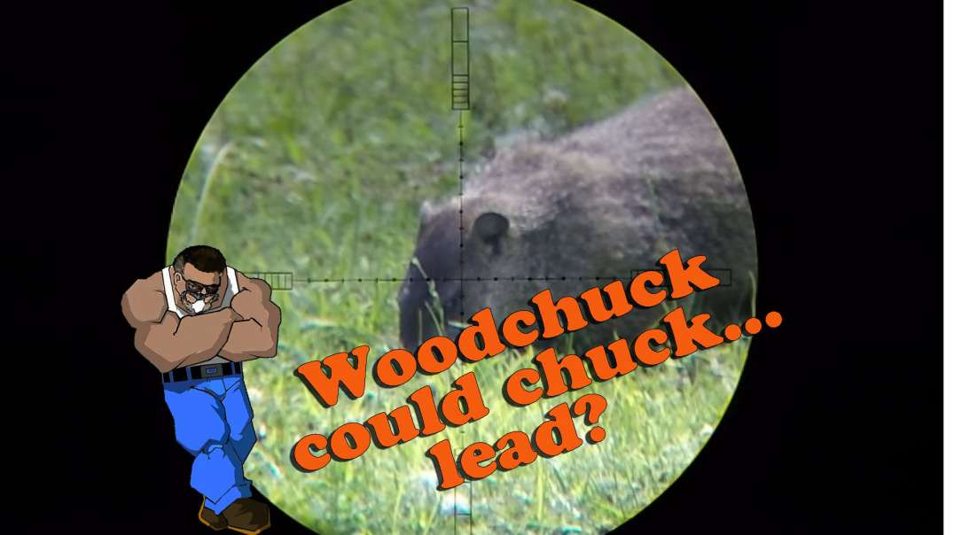 Woodchuck Down Gauntlet .22