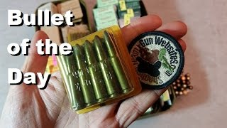 Bullet of the Day: German Plastic 7.62x39mm Rounds