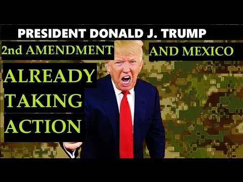 President Trump ATTACKING 2nd Amendment and Mexican Borders What I think