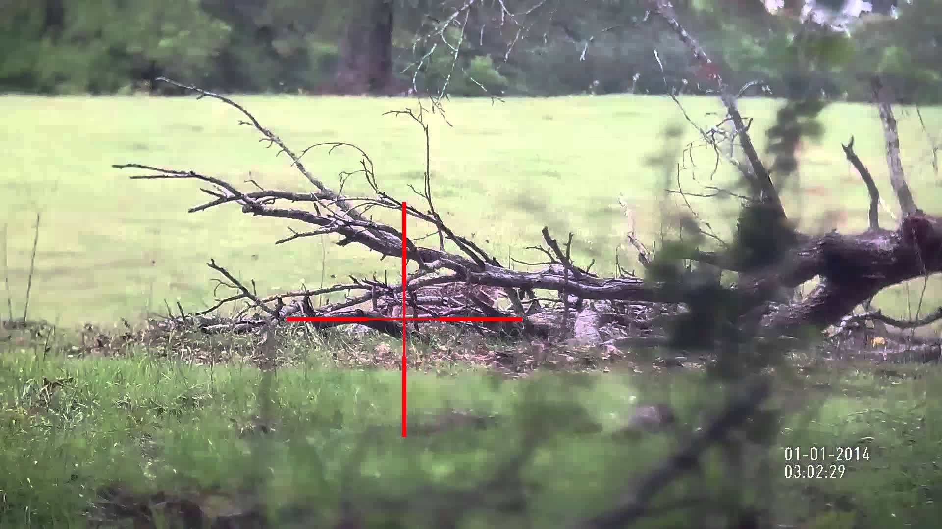 ATN X-Sight 5-18x Daytime Footage of Coyote Hunting