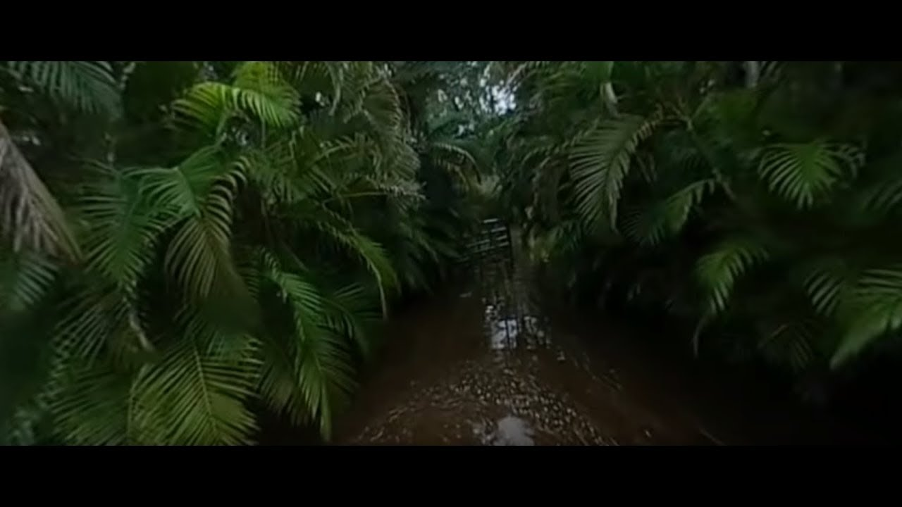 HCSC Nearly under water! Florida rain, NBD!