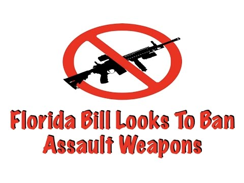 Florida Bill Looks To Ban Assault Weapons