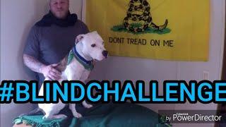 #blindchallenge American Pit Bull Terrier