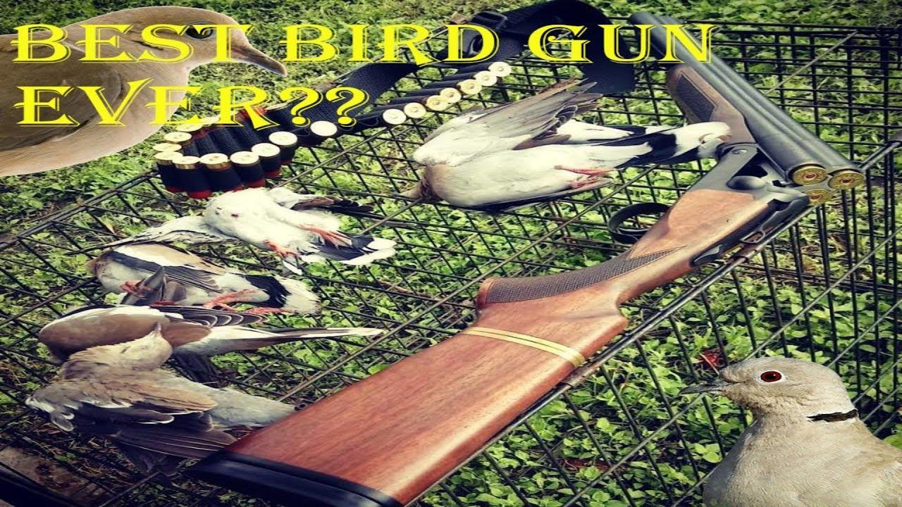 Chiappa Triple Threat 12 Gauge Shotgun. Gun wall review #5