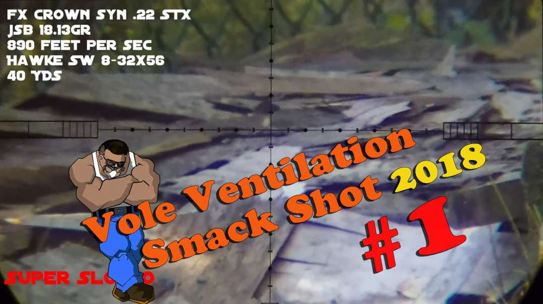 Vole Ventilation Smack Shot #1 2018