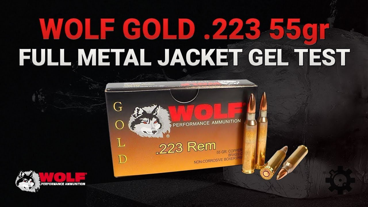 Wolf Gold .223 55gr Full Metal Jacket | Gel Test