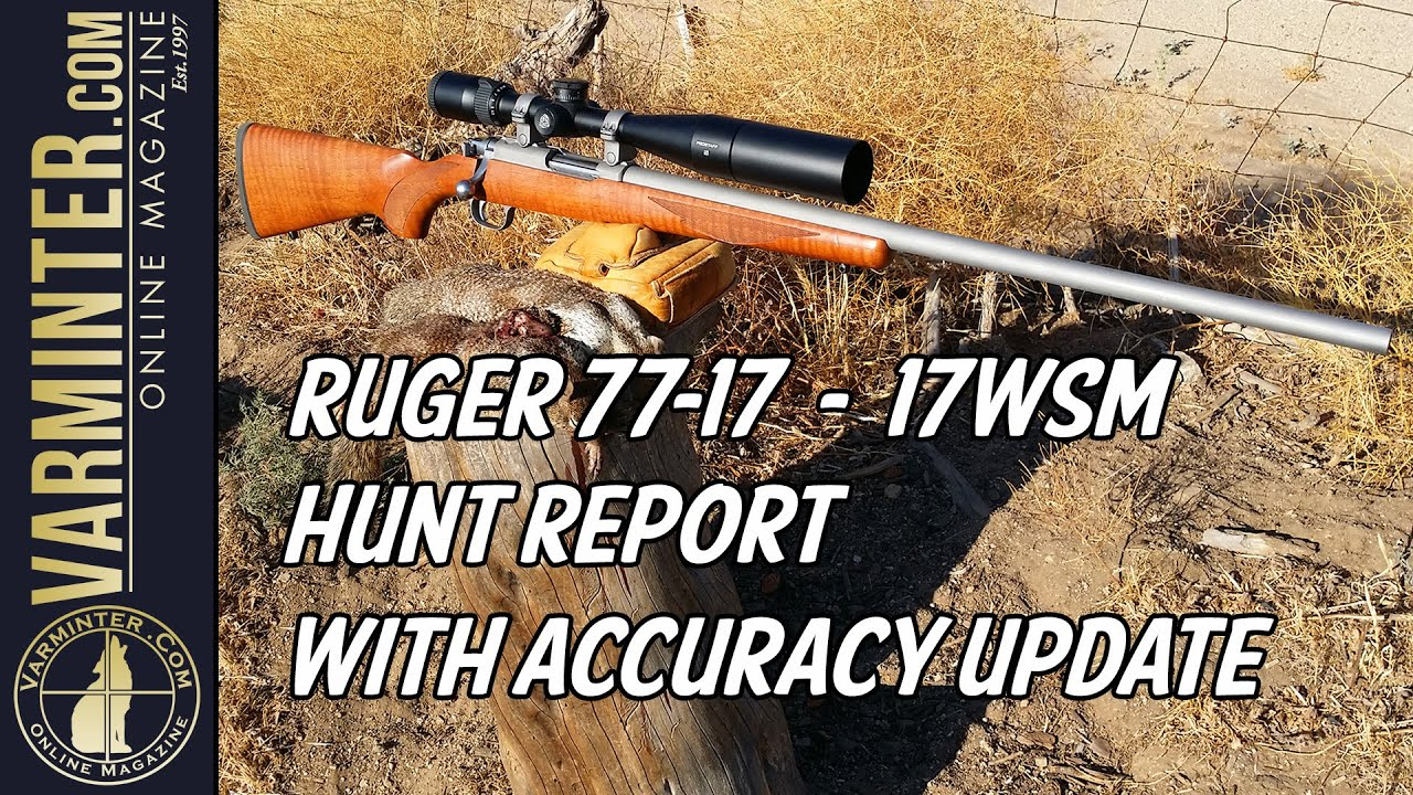 Ruger 77/17 - 17WSM Hunt Report Part One with Accuracy Update