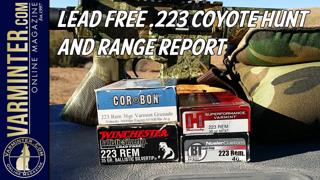 Lead Free .223 Coyote Hunt and Range Report