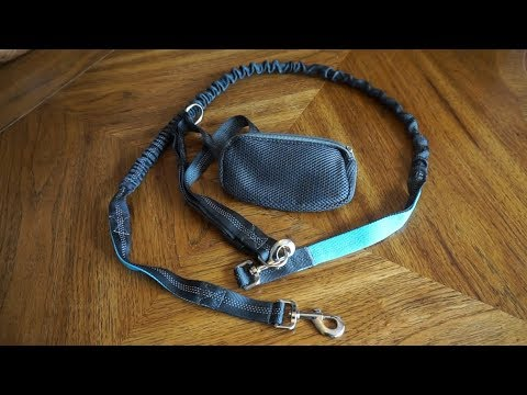 Bleds hands-free dog leash unboxing and initial impressions (with Corgi test drive)!