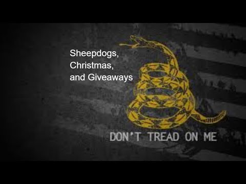 2A Tuesday #011:  Sheepdogs, Christmas, and Giveaways