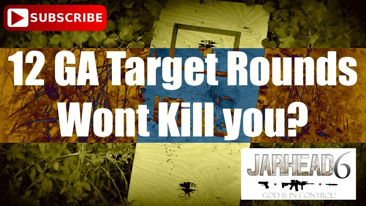 12 GA Target Rounds Wont Kill you?