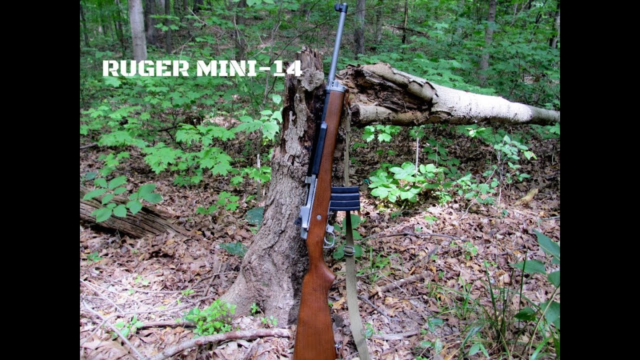 Ruger Mini - 14
