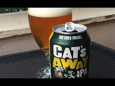 Cat's Away IPA