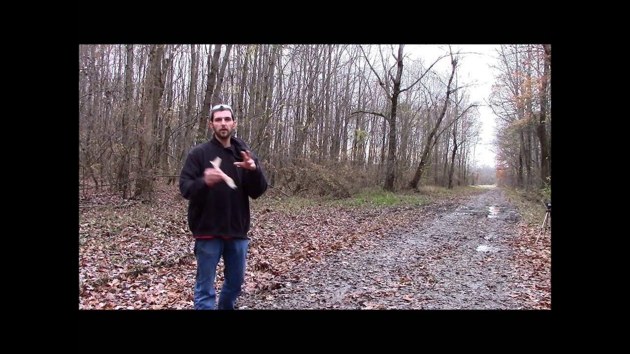 The GunFather Trick Shot Tuesday Red Baron Quick Draw Trick Shot