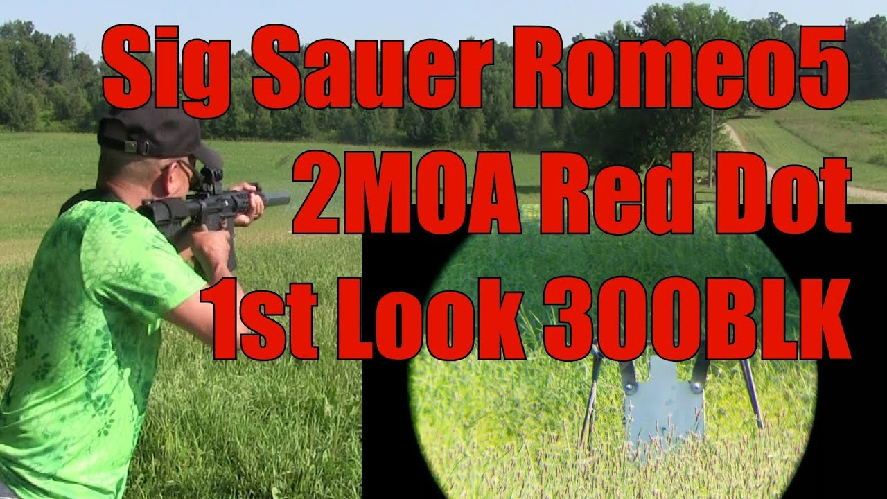 Sig Sauer Romeo 5 2MOA Red Dot 300BLK Pistol Suppressed Sightmark Scope