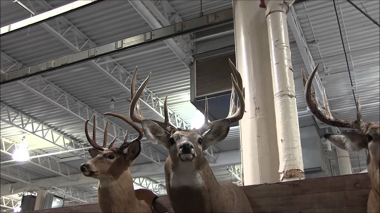 2014 Ohio Deer & Turkey Expo Why They Call Ohio The BUCKeye State Part I