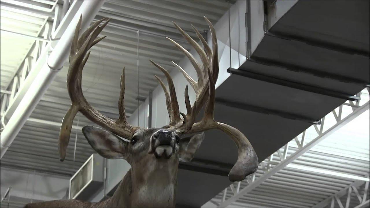 2014 Ohio Deer & Turkey Expo Why They Call Ohio The BUCKeye State Part III