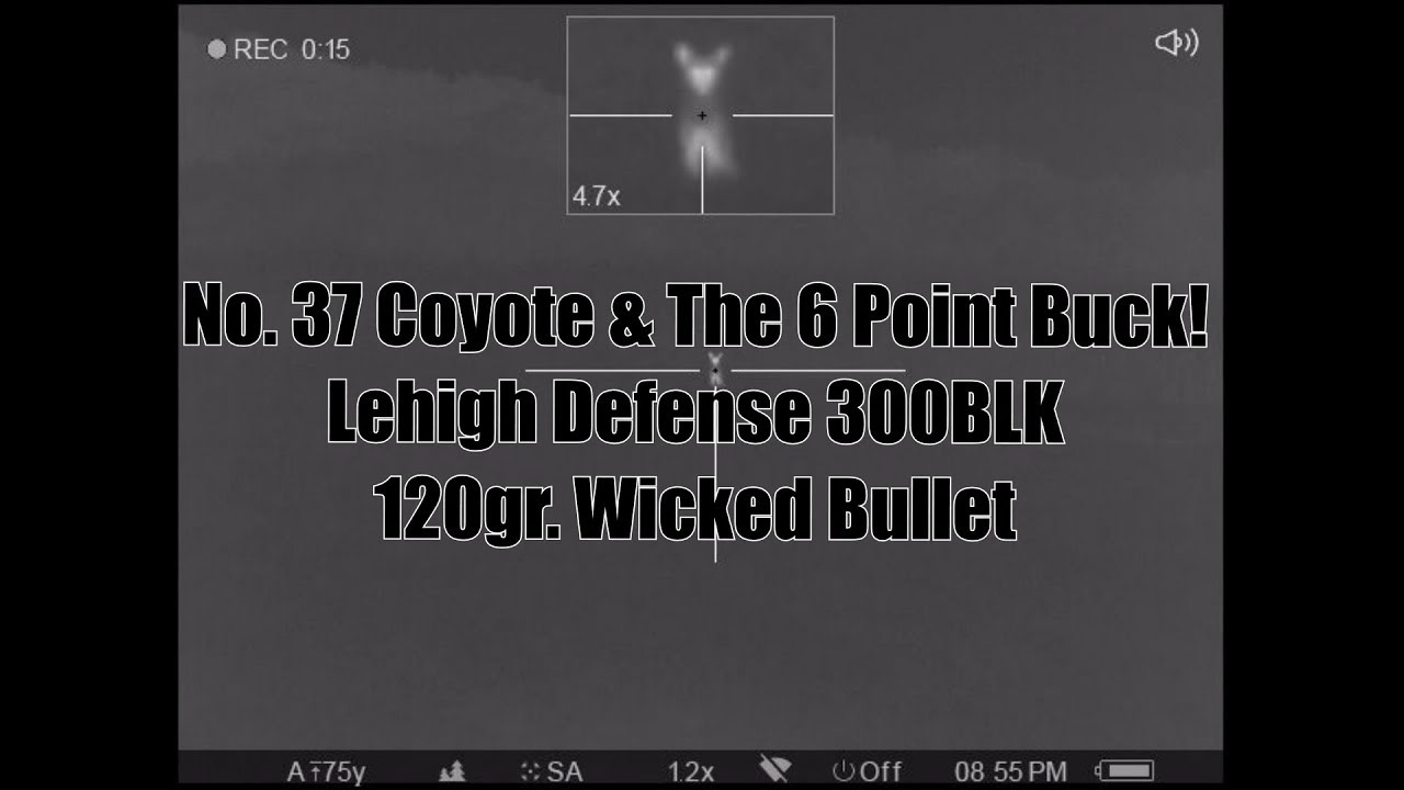 No 37 Coyote The 6 Point Buck Lehigh Defense 300BLK 120gr Wicked FTM Bullet  Pulsar Trail XP38