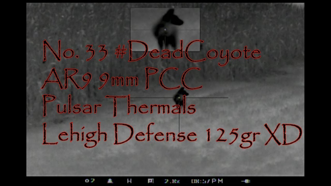 No 33 Coyote Never Give Up AR9 9mm PCC Pulsar Apex Helion Lehigh Defense 125gr XD