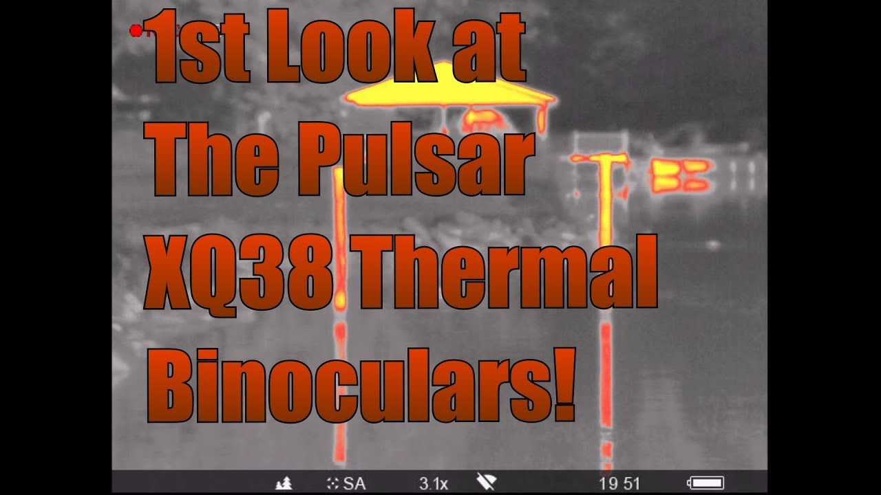 1st Look at The Pulsar XQ38 Accolade Thermal Binoculars!