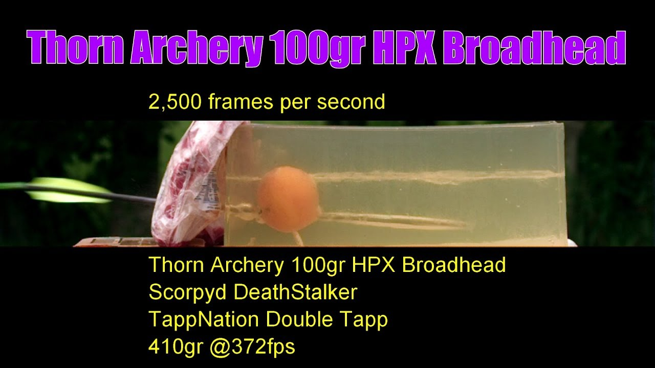 Thorn Archery 100gr HPX Crossbow Broadhead 1st Look Outdoors Accuracy and High Speed Video Ballistic