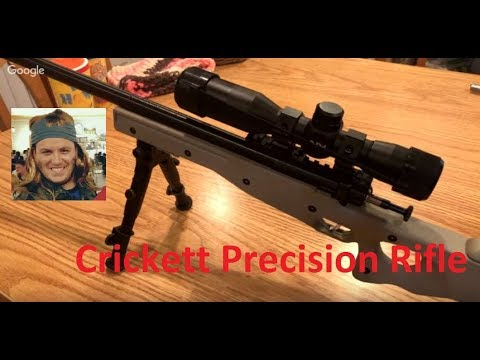 Crickett Precision Rifle package: First Range report