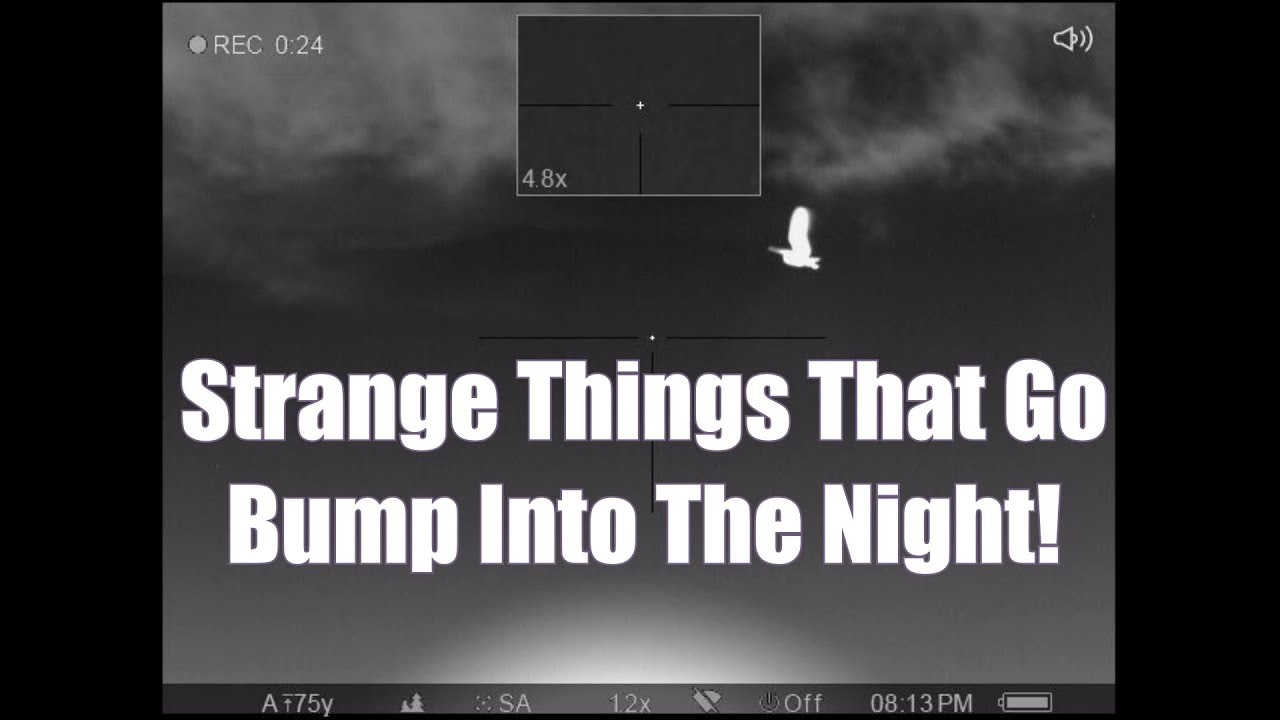 Strange Things That Go Bump Into The Night Pulsar XP38 Trail Thermal