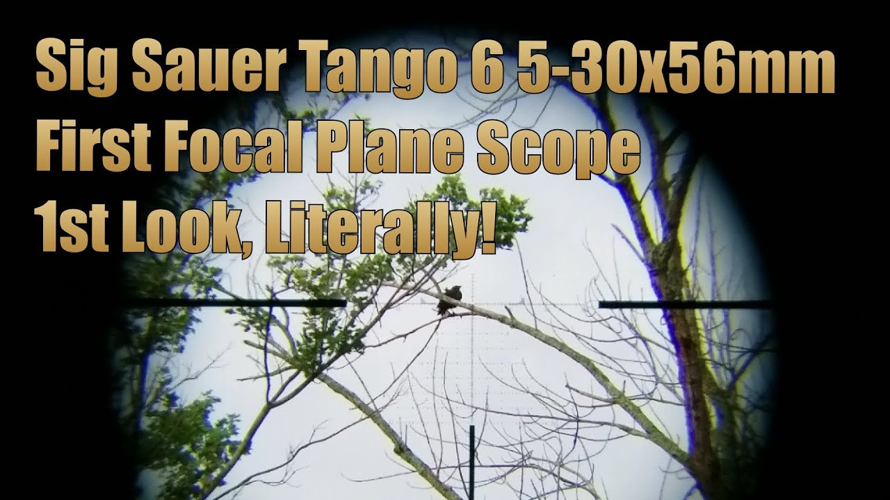 Sig Sauer Tango 6 5-30x56mm First Focal Plane Scope 1st Look Through The Scope!
