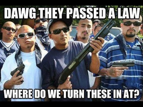 What they REALLY mean by Gun Control