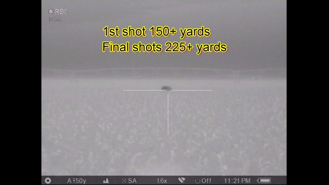 Lehigh Defense 2nd Night Big Ol South Texas Boar 225 Yard Running 6PDK 6mm 92gr