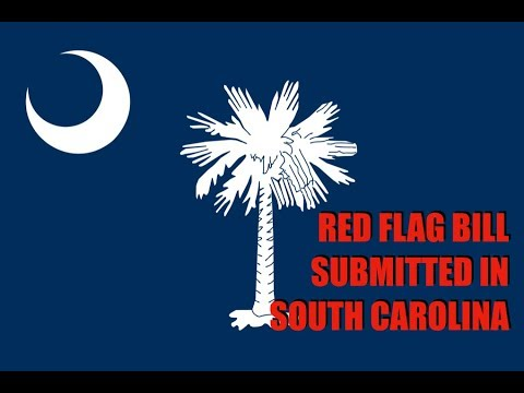 Red Flag Bill Submitted In South Carolina