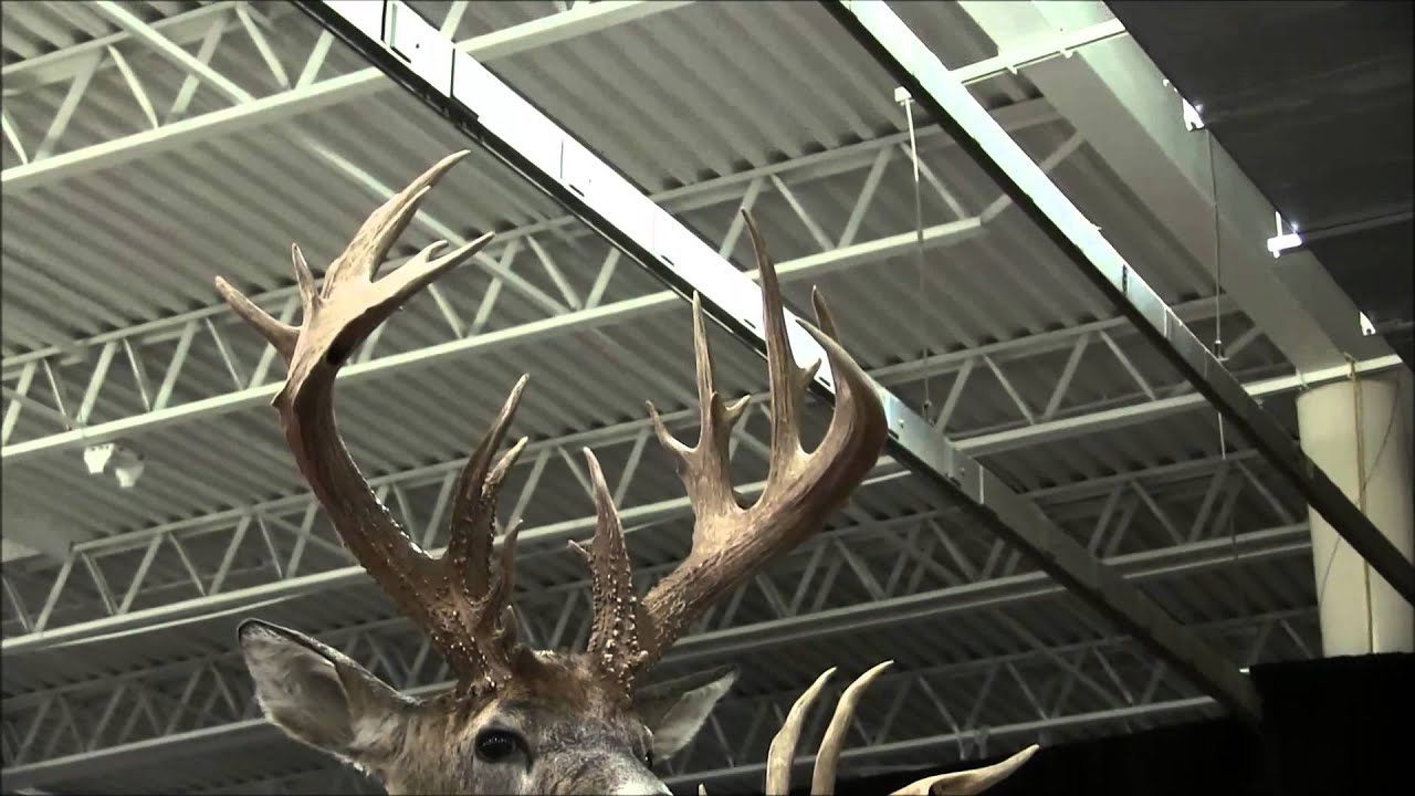 2014 Ohio Deer & Turkey Expo Why They Call Ohio The BUCKeye State Part II