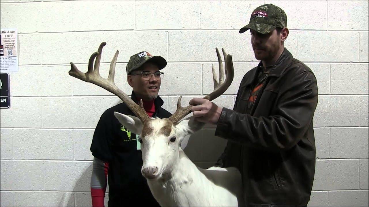 2015 Ohio Deer & Turkey Expo The Piebald Buck by Nito Mortera with Archersparadox2020