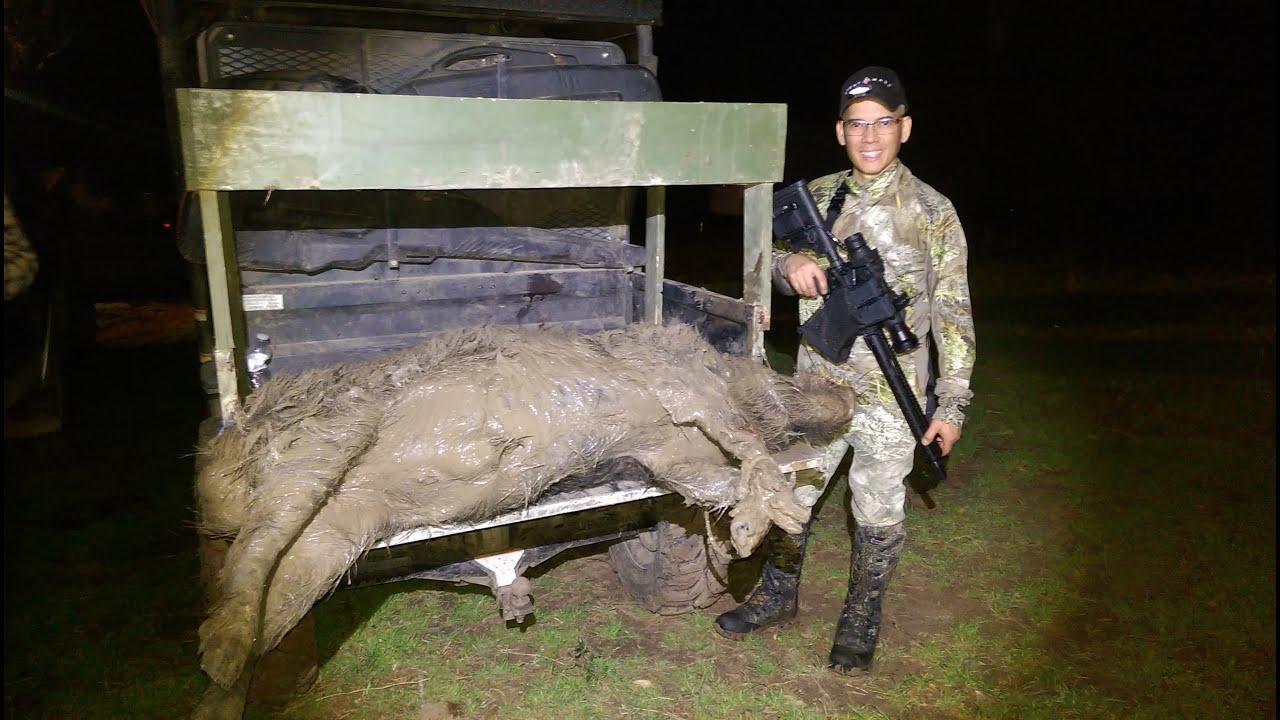Thermal Hog 300 AAC Blackout Pulsar Apex XD75 2nd Night Texas Hog #4 HOGZILLA