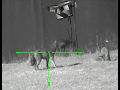 Texas Hog Hunt Sightmark Photon Digital Night Vision