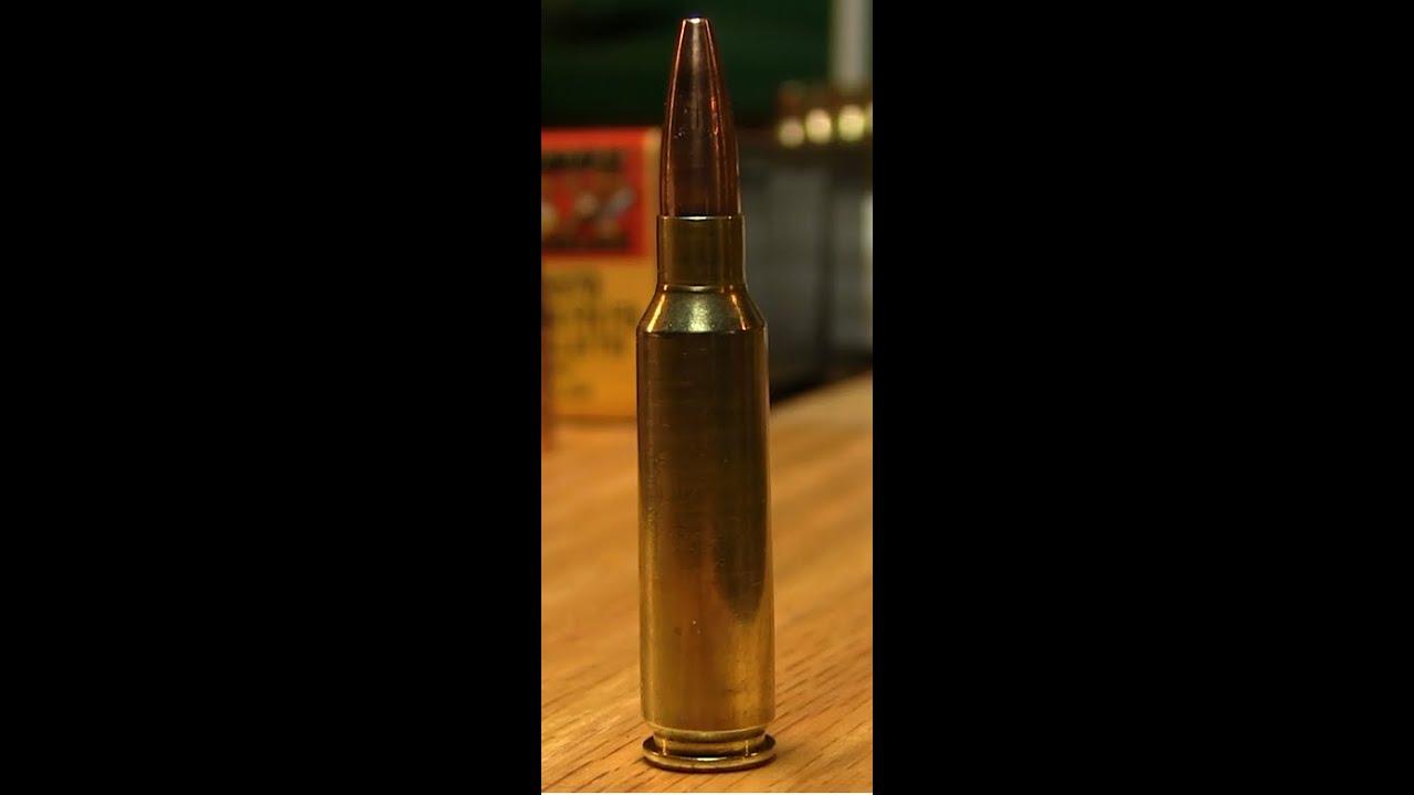 Barnes Bullets 62 grain Varmint Grenade Sight In by Nito Mortera
