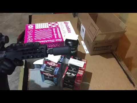 Flash Can on Ar Pistol
