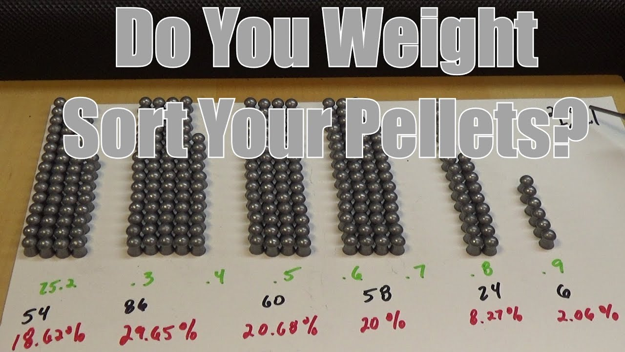 Umarex Gauntlet 25 Pellet Rifle Should You Weight Sort Your Pellets