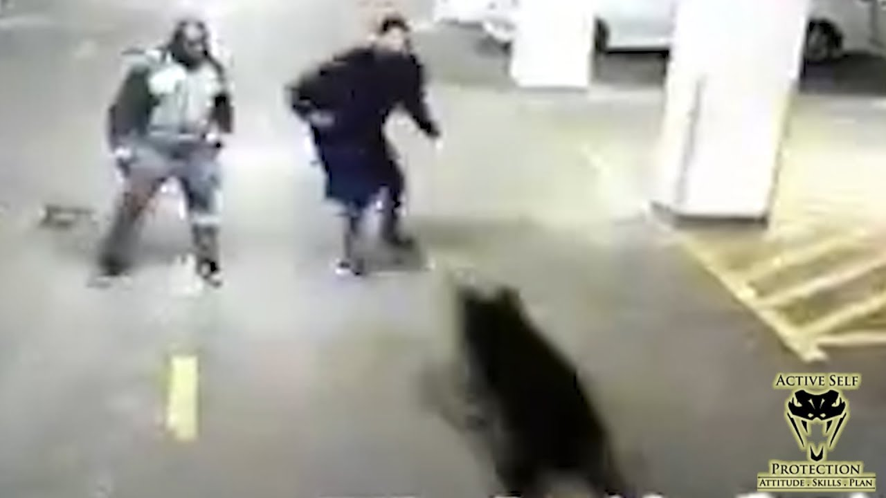 Kenyan Man Defends Himself from Guard Dog Who Got Off Leash   Active Self Protection