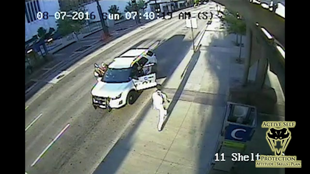 Assault on Officer Caught on Camera