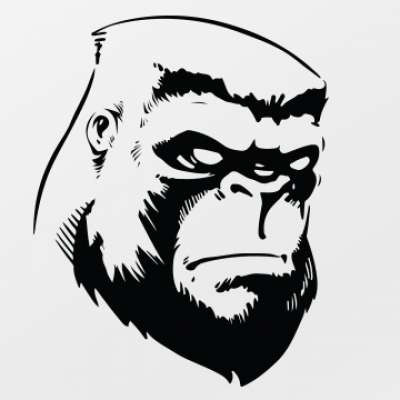 GorillasAndGuns