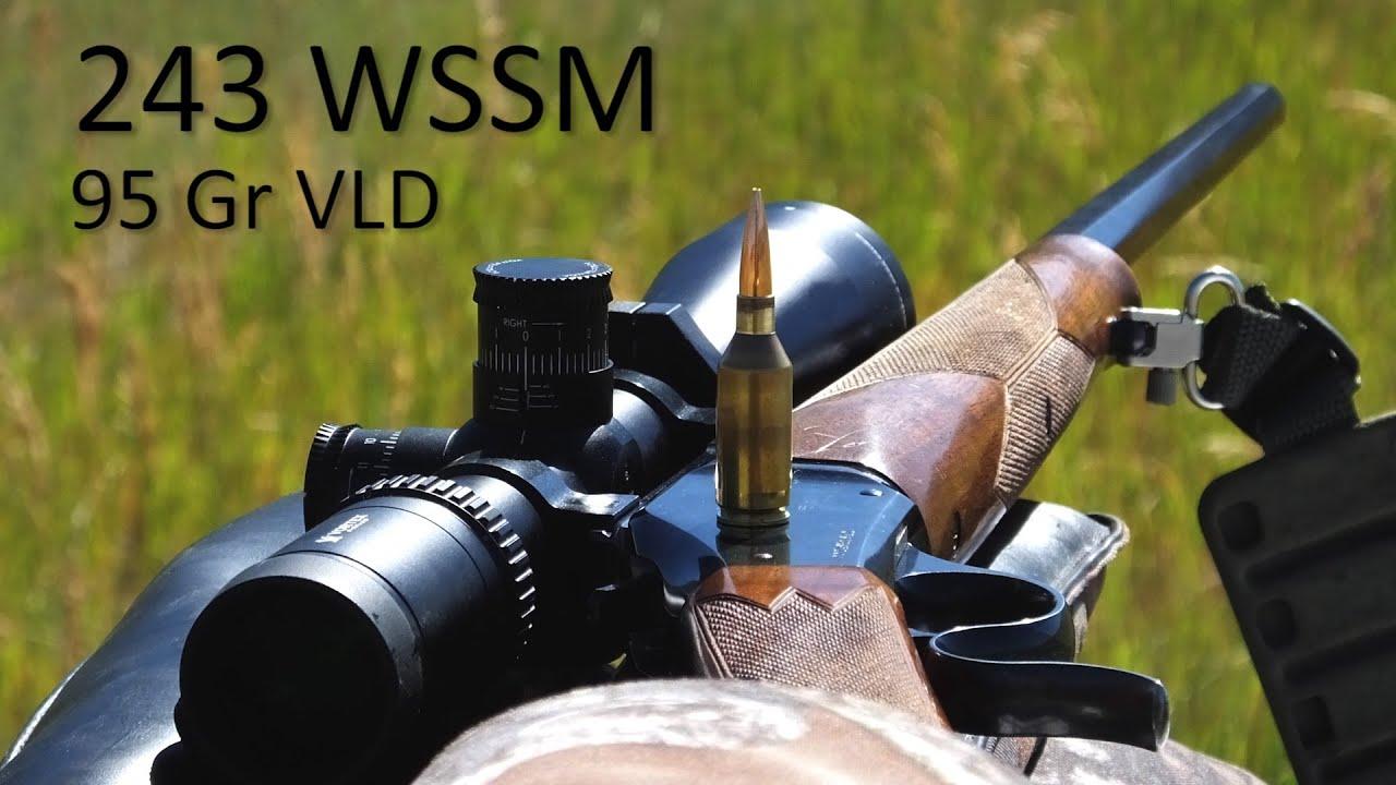673 Wolf Target at Spirit Ridge